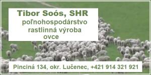 Kliknite na Tibor Soós, SHR